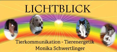 Tierkommunikation_Visitenkarte_mit Regenbogen_Vorderseitea